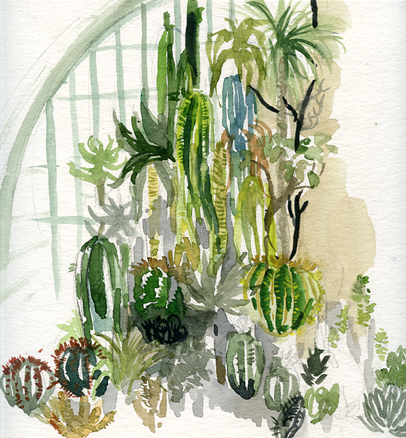 Aquarelle jardin des plantes montpellier for Jardin des plantes de montpellier
